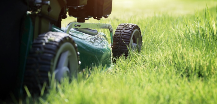Section of a green lawn mower on partially cut grass