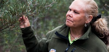 Dharawal National Park Guided Indigenous Tours