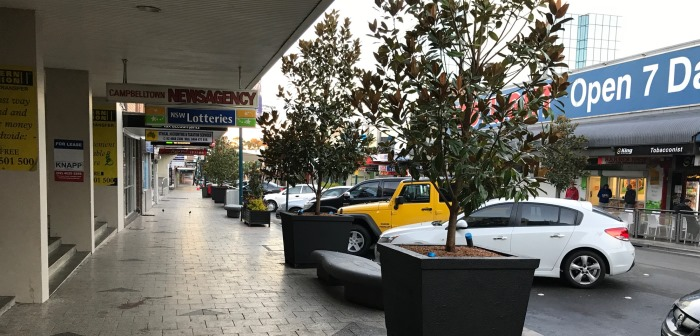 New Greenery For Queen Street Pots