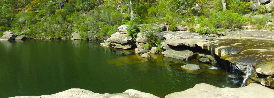An image of The Basin, Campbelltown