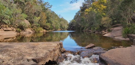 River with small waterfall. Ingleburn Weir. Photo taken by Yvonne Budd, Nature Photo Competition, 2014